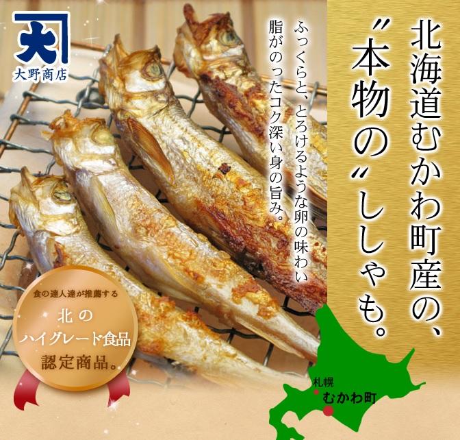 aozora_shisyamo_23