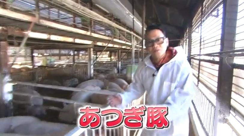 本日の食材_あつぎ豚002