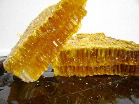 日本蜜蜂のハチミツ